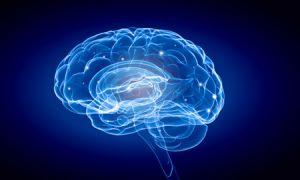 Scientific blue image of the brain