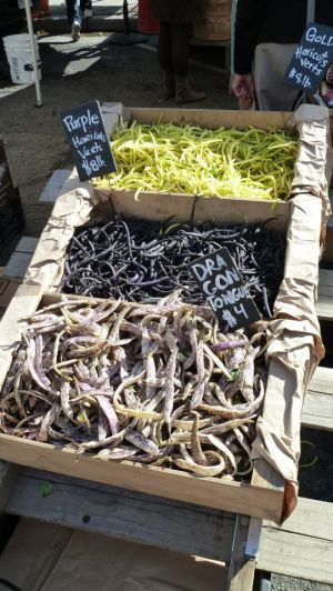 colorful heirloom beans for sale at outdoor market