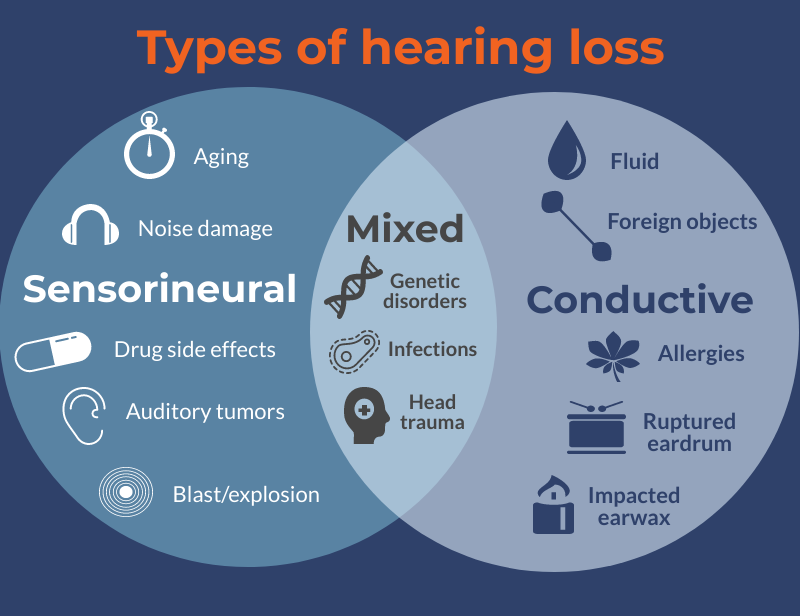 Infographic on types of hearing loss
