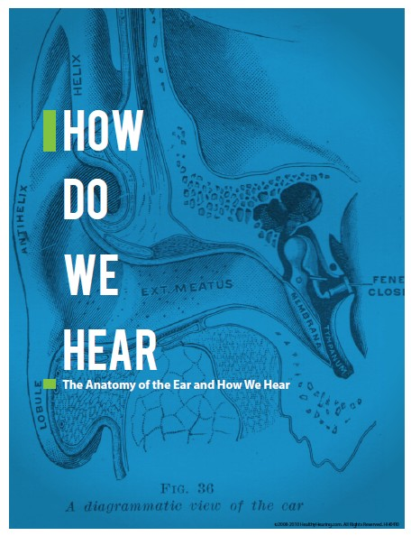 Reasons for hearing loss, ear anatomy, why we hear
